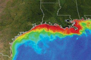 "Dead Zone Summer"" Summer phytoplankton conditions along the Gulf Coast. Image courtesy of NASA/Goddard Space Flight Center Scientific Visualization Studio"