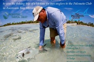 Bonefish and Tarpon Trust Membership Promotion. Image courtesy of the Bonefish and Tarpon Trust