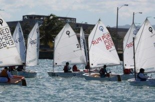 The Optimist Fleet competes in San Juan Bay in the 2013 edition of the regatta.