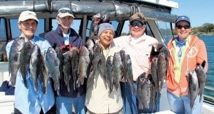 Please meet the ladies who don't just fish; they catch too! From left to right: Deirdre Burford, Grace Knight, Boni Carstarthen, A J Crowe, and Vicki Hall. Each fisher is holding a fist-full of black sea bass!