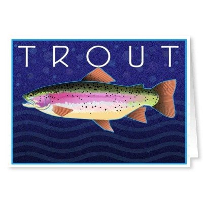 Trout Fishing Note Cards