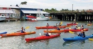 Kayak paddlers assemble for an afternoon on the water. Photo by Jeff Dennis