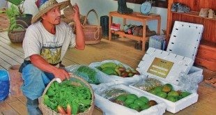 Farmer Drake with baskets of produce. Photo by Julian Putley