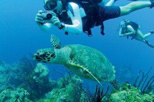 Give Back Vacation, The Florida Keys: Photo courtesy of Larry Hammonds, Christopher Flint and Craig Hellmann