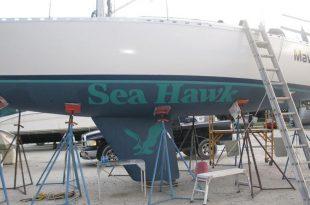 Sea Hawk Paints Caribbean Collaboration