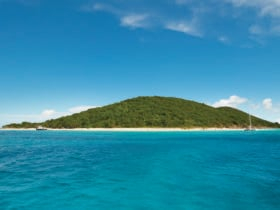 St. Croix's Buck Island (Credit USVI Department of Tourism)